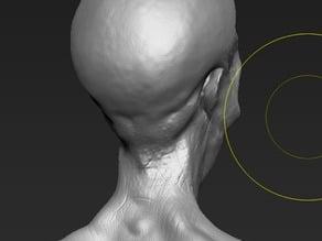 Detailed Alien Head