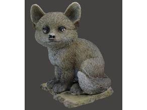 Fox Scan