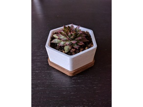Hexagonal Planter Small