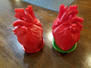 Anatomical Heart Dice Cup