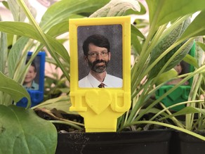 Picture Frame Plant Stake