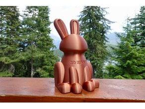3D Bunny Model
