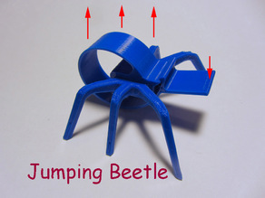 Jumping Beetle