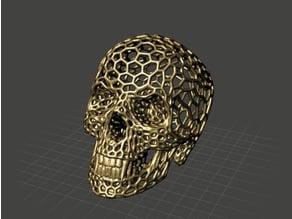 3D Vampire Skull Voronoi Mesh