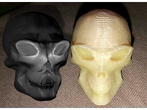 Hybrid skull