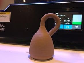 Single complete Klein Bottle