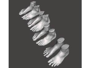 Standard Foot Scans