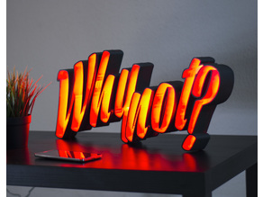 "LED Light Letters ""Why not?"""