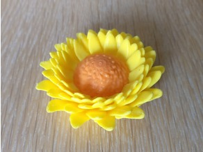 Tournesol (Sunflower)