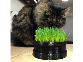 Cat Grass Planter