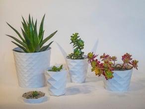 Parametric flower pots