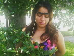 Augenbraue von Frida