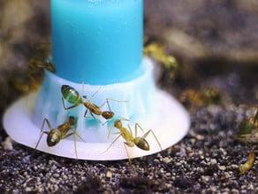 byFormica Liquid Feeder for Ants (Obsolete Version)