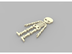Flexi Skeleton