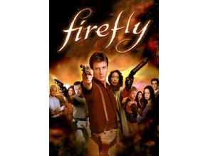 Firefly Lithophanes