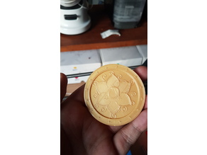 Chikorita Shiny Medal