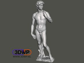 David By Michelangelo Sculpture (Statue 3D Scan)