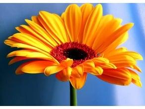 Flower relief 4