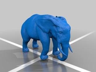 Pushing Elephant