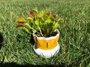 Bottom watering flower pot