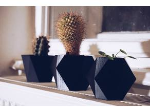 Geometry flower pots!