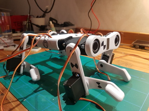 Robotic Dog