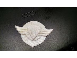 Kawasaki Vulcan Wings