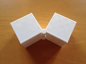 Two Hinged Boxes