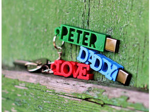 PETER USB Case with Keychain