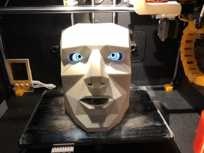 Mask with Raspi Eyes