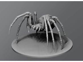 Undead Spider