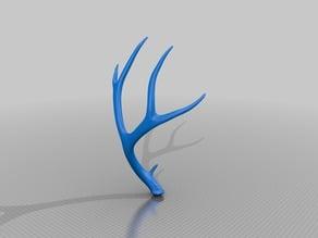 Deer Antler, hi resolution scan