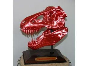 Multicolor T-Rex base