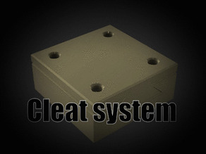Cleat system