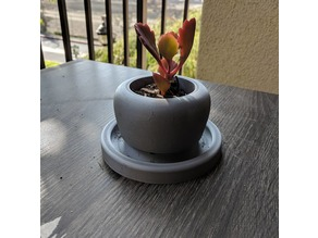 Simple Succulent Pot with Drain