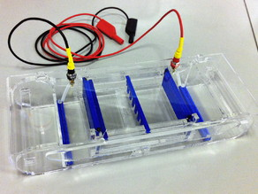 Parametric Gel Electrophoresis System