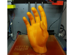 Hand by X627 cleaned up and orientated