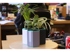 Multi-Color Self-Watering Planter