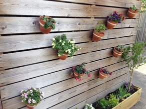 15cm Plant pot wall mount