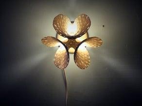 Porifera Lamp