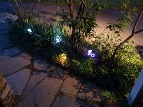 Elf Lights
