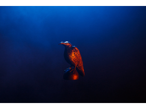 Raven - Vikings 3D Prophecy - Episode 16 - Crossing