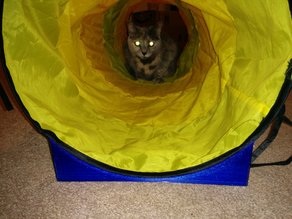 Cat tunnel stand