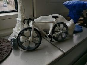 bicycle race model