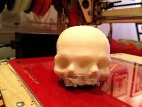 Triclops Baby Skull