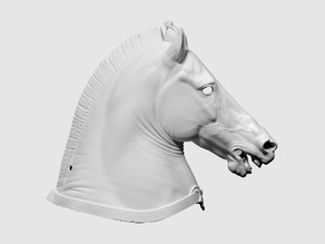 "3D scan of Horse Head (""Medici Riccardi"" horse)"