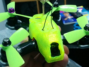 RotorX Atom RX122 Canopy & Camera Mount Set