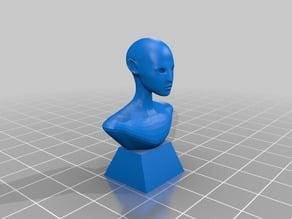 My Avatar bust