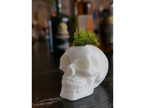 Skull with Moss Mohawk Hairstyle