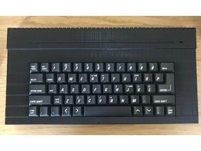 ZX Spectrum +2A/B Replacement Case